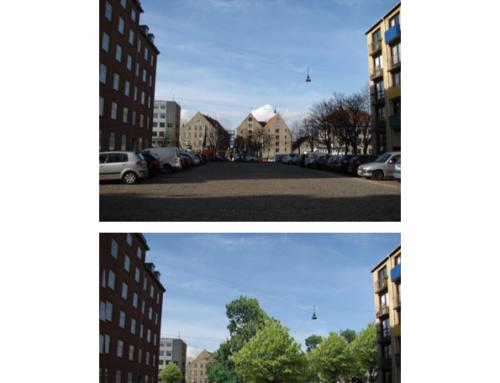 Flere bytræer til Københavnerne