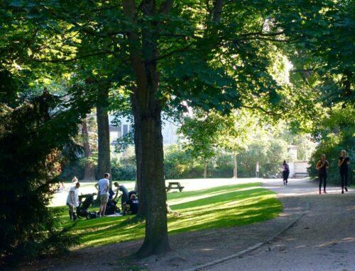 Plant træer og gør byen mere grøn