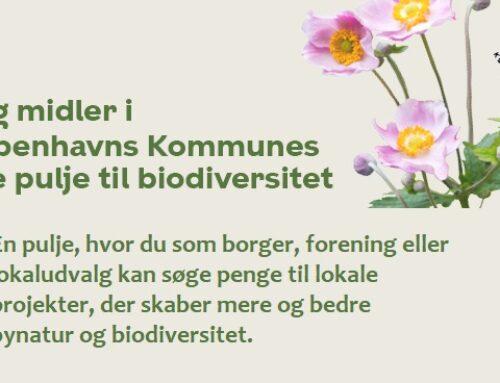 Så er 2. ansøgningsrunde til biodiversitetspuljen åbnet